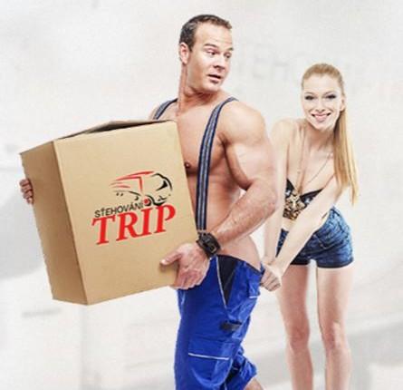 Stěhování Praha Trip