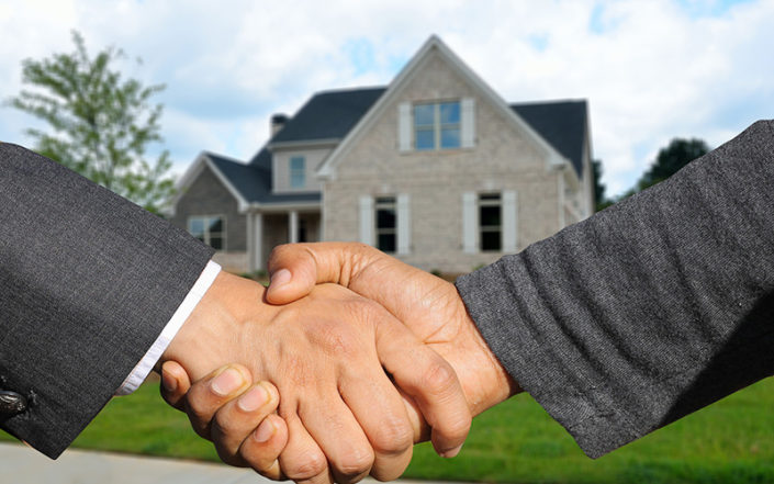 nemovitosti v dražbě